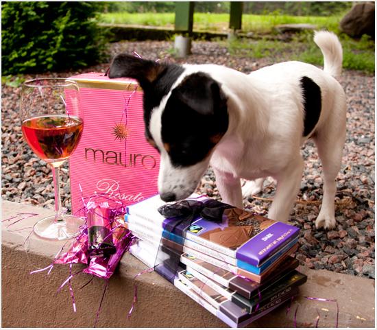 Trevlig helg med choklad, rosé & hund!